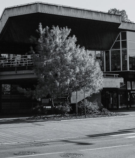 Analogue Photography Film Architecture Bridge Bridge - Man Made Structure Building Building Exterior Built Structure City Connection Day Film Photography Growth House Ilford Ilford Pan F50 Nature No People Outdoors Plant Residential District Road Street Transportation Tree