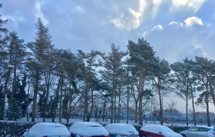 Dublin Spring 2018 Car Snow Tree Cold Temperature Land Vehicle Winter Stories From The City Mode Of Transport Weather Nature Cloud - Sky Day Beauty In Nature Sky Outdoors Transportation No People