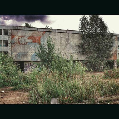 Проходная завода БашСельМаш заброшенный завод мрак печаль уныние Abandoned Abandon Abandonedplaces разруха Tree Trees VSCO Vscocam Ig Iger Vscophile Vscogrid 1 Achtung