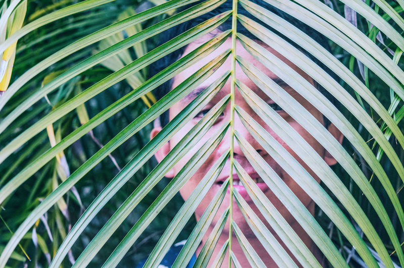 Abstract Architectural Feature Backgrounds Close-up Colorful Day Design Detail Full Frame Green Green Color Growth Low Angle View Modern Multi Colored Nature No People Outdoors Pattern Repetition