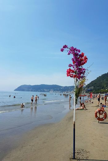 Water Beach Sea Outdoors Sky Day Horizon Over Water Alassio Summertime CELEBRATION DAY Flowers At The Beach Riviera Ligure Liguria,Italy Relaxing Moments Sandy Beach EyeEmNewHere