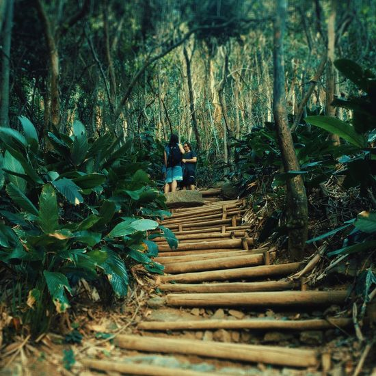 Steps Growth Tree Day Nature Plant Outdoors Full Length People Trilha Vacations Landscape Brazil Rio De Janeiro Morro Da Urca Travel Destinations Beach EyeEm Best Shots EyeEm Selects Freshness Leaf Green Color EyeEmNewHere Urca Lost In The Landscape