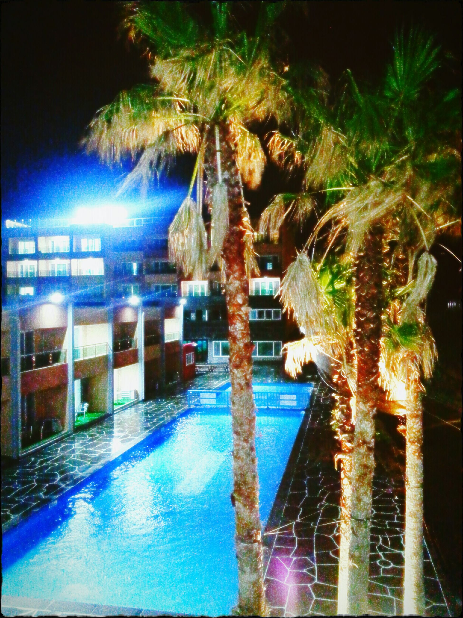 architecture, built structure, building exterior, water, illuminated, reflection, night, city, tree, swimming pool, blue, building, residential building, canal, palm tree, no people, sky, residential structure, outdoors, river