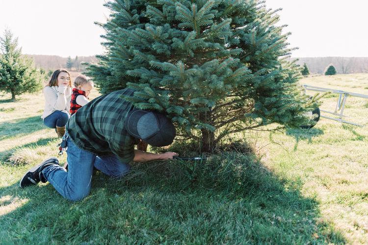 People on field by tree