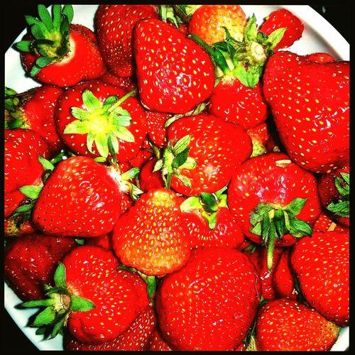 Strawberries Red June Lovely Yammie Summer Loveit Happy