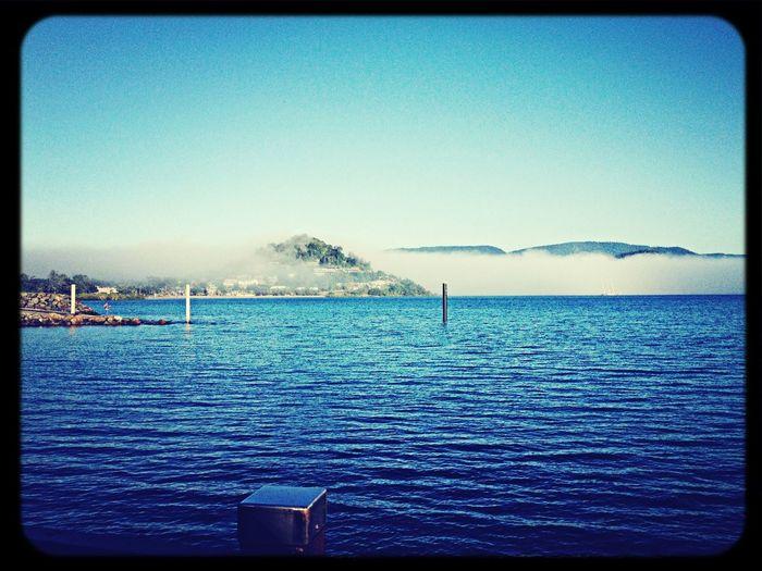 Morning fog Paradise Good Morning