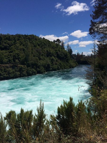 Waikato river - Huka falls No Filter, No Edit, Just Photography Water Nature Scenics Tree Sky Beauty In Nature Idyllic Outdoors Sea No People Tranquil Scene Day Tranquility Landscape Waterfall