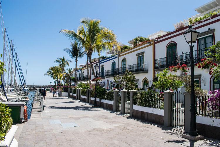 A Afortunada Amanecer En El Puerot Avenida Privilegiada Tranquility Vida En El Puerto Vida En La Playa