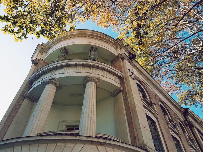 Up to history Low Angle View Architecture Built Structure Day No People Building Exterior Architectural Column Outdoors Tree Sky Streetphotography Architecture Tbilisi Street Photography Tbilisi Georgia Autumn Colors Low Angle View