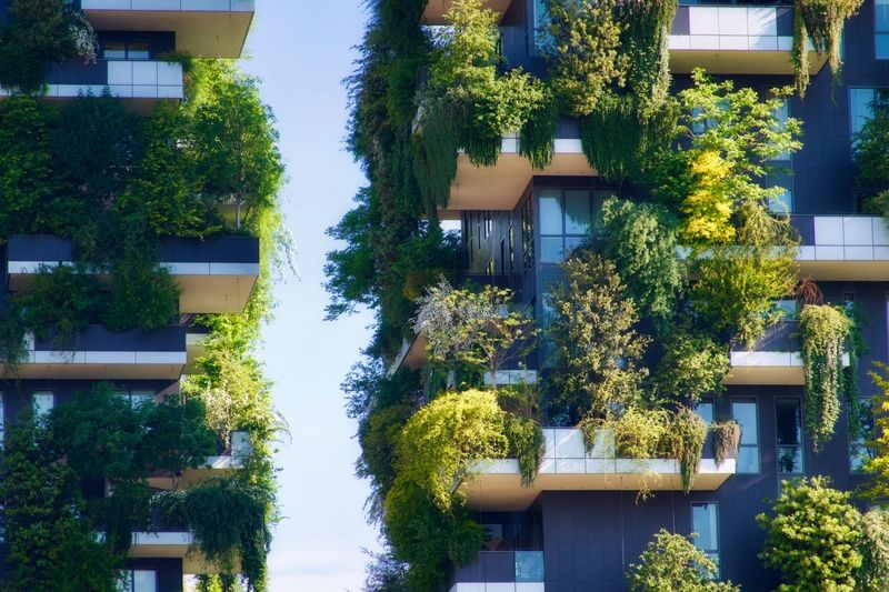 Plant Architecture Built Structure Tree Growth Building Building Exterior Outdoors Residential District Green Color Window No People Nature Sunlight Day House City Flowering Plant Flower Balcony The Architect - 2019 EyeEm Awards
