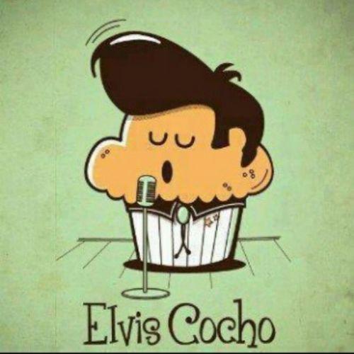 Elvis Cocho Fun