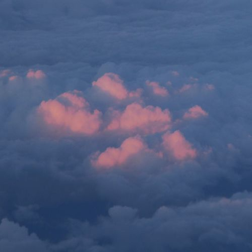 Kissed by the evening sun Pink Clouds At Sunset Heaven View From A Plane Window Untamed Heart Vienna's Calling😍😎 über Den Wolken.. Tranquility Enjoying The View Lucky Me🦄 EyeEm Nature Lover Tranquility In Nature You Raise Me Up✨ My Soul's Language Is📷 Mood Captures For My Friends 😍😘🎁 Simple Beauty Flying Love To Be Above The Clouds Golden October Tranquil Scene Enjoying Life Perspectives On Nature An Eye For Travel Go Higher