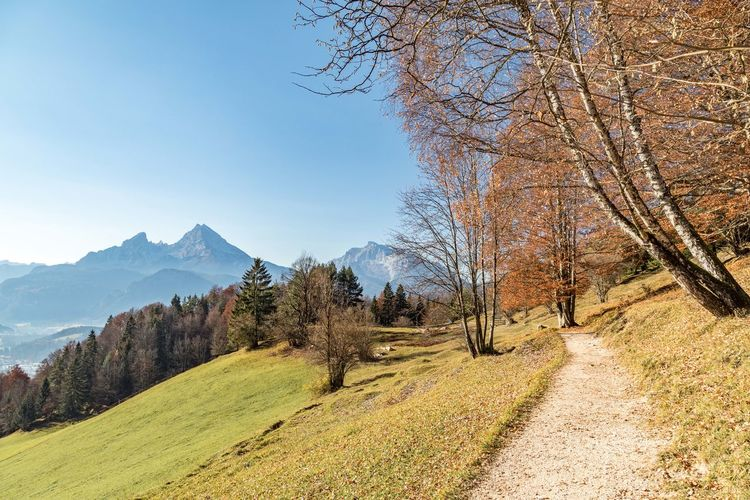 Watzmann bei Berchtesgaden Tree Plant Scenics - Nature Sky Beauty In Nature Tranquility Mountain Tranquil Scene Landscape Environment Nature Day Land No People Non-urban Scene The Way Forward Road Clear Sky Direction Grass Mountain Range Outdoors Change Autumn Mood