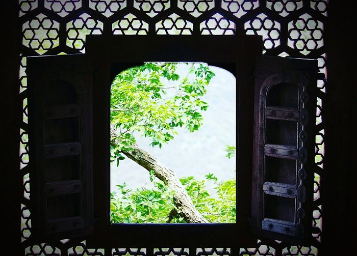 Just one of the spots in Jadhavgarh fort! Window Tree Frame Built Structure No People Architecture Nature Daylight Photography Sunlight EyeEm Best Shots PhonePhotography Photographing EyeEmNewHere Connected By Travel EyeEm Best Edits ShotOnPixel EyeEm Gallery Indianphotographer Indiapictures India_clicks Colorfulindia Fort Ancient Ruins Solitude And Silence Indoors