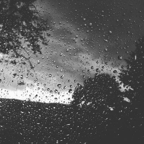 Rainy Days Water Window Blackandwhite
