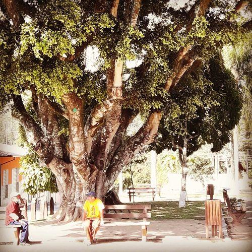 Praça  City Sunday Morning Park Celo_teixeira