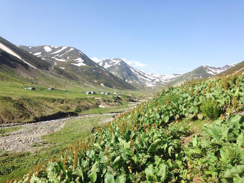 Hi! People Watching Sunny Mountains Snow Nature_collection Enjoying Life Happy Followme Like YAYLA :)