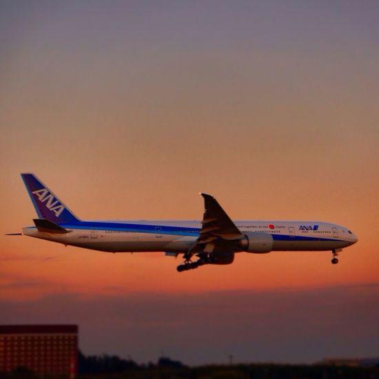 Taking Photos Enjoying Life Quality Time Sunset Japan
