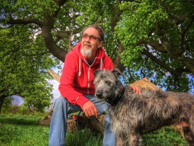 Enjoying The Sun I Love My Dog That's Me Lurcher Sighthound LEO... The One Eyed Lurcher...