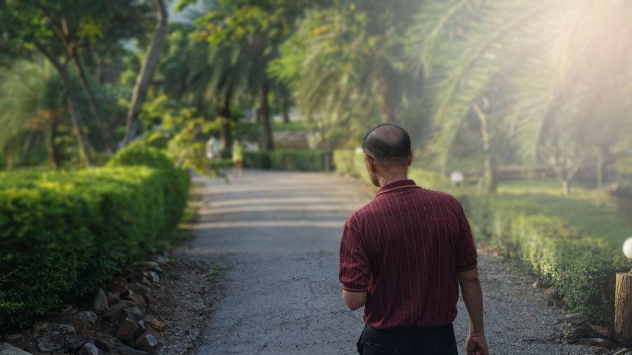 Rear view of senior man walking on footpath in park
