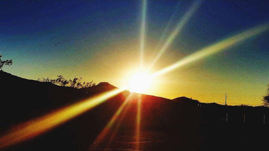 Sunset Sunbeam
