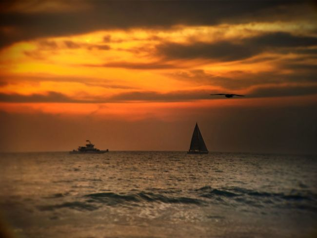 """""""I need to know if this feeling flows both ways..."""" Sunset Ship Boat Ocean Life Is A Beach Sunset_collection Eye4photography  Beach Sunset And Clouds  Ocean Dream Sky And Clouds EyeEm Best Shots EyeEm Best Shots - Sunsets + Sunrise Nature_collection Sunset Silhouettes"""