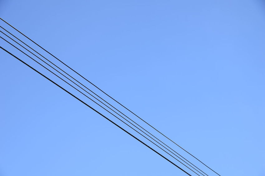 Overhead power telephone cables Blue Cable Clear Sky Connection Copy Space Day Low Angle View Nature No People Outdoors Power Cable Sky Telephone Telephone Cable Telephone Cables Telephone Line