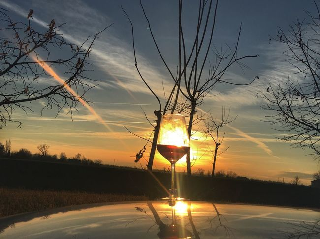 Wineglass Wine Red Wine Sunset Sky Tree Sun Beauty In Nature No People Scenics