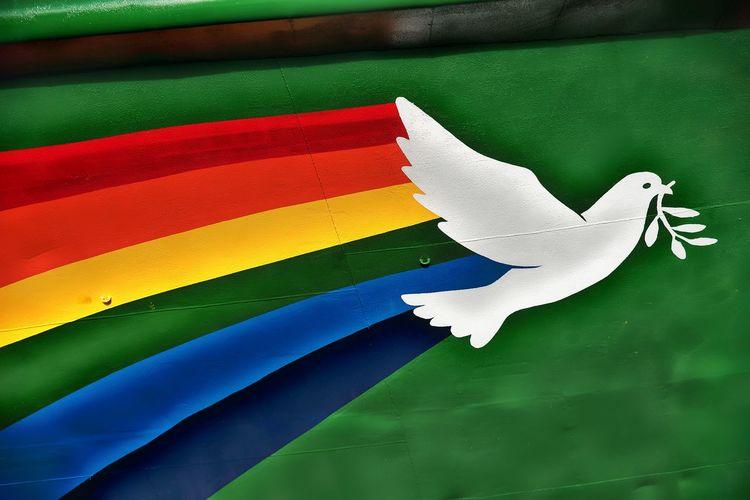 Colombia Green Greenpeace Olivier Peace Rameaux Bird Boat Ship White