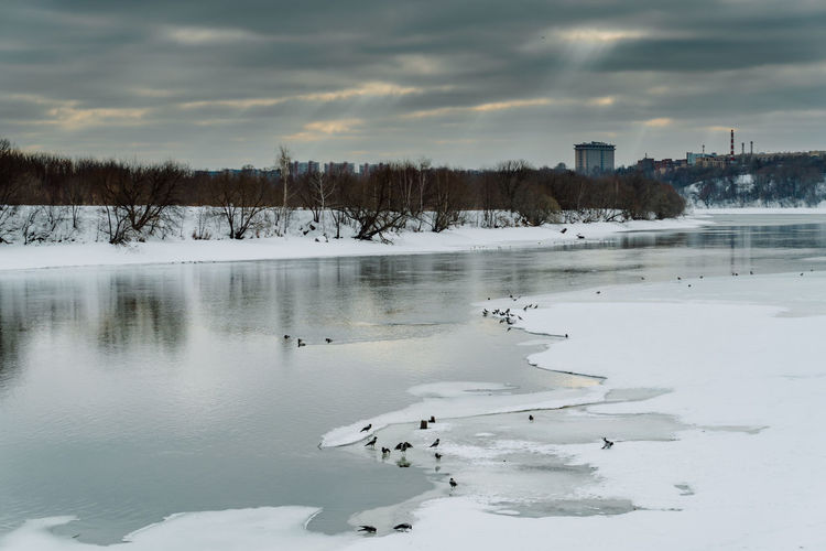 View of the Frozen River with Ravens on the Ice and Cityscape in the Background During Scenic Sawn at a Winter Day in Kolomenskoye Park, Moscow Cloud - Sky Winter Cold Temperature Water Sky Beauty In Nature Snow Scenics - Nature Frozen Nature Tranquil Scene No People Lake Plant Tranquility White Color Built Structure Building Exterior