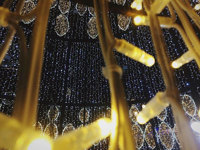 Christmas tree lights Christmas Tree Lights Christmas Decoration Illuminated Pattern No People Night Close-up