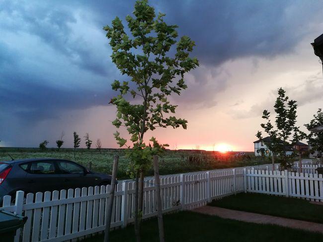 Calm Before The Storm Tree Sunset City Sky Grass Cloud - Sky