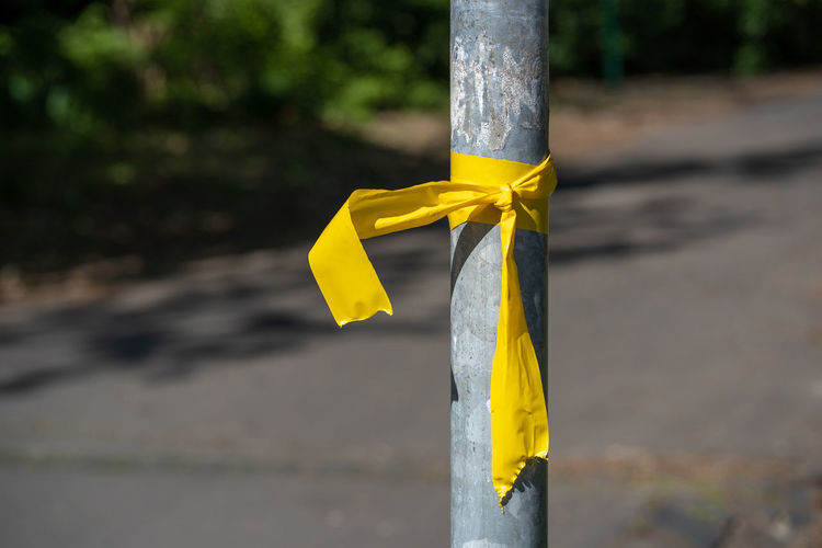Close-up of yellow tied up on pole