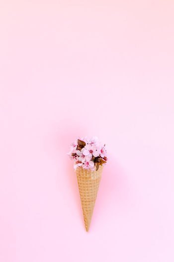 Close-up of ice cream cone with flowers against pink background