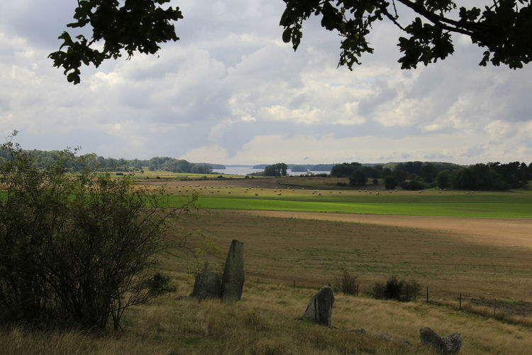Agriculture Ancient Monument Beauty In Nature Cloud - Sky Field Gudahagen Idyllic Rural Scene Sweden Tranquil Scene Tree