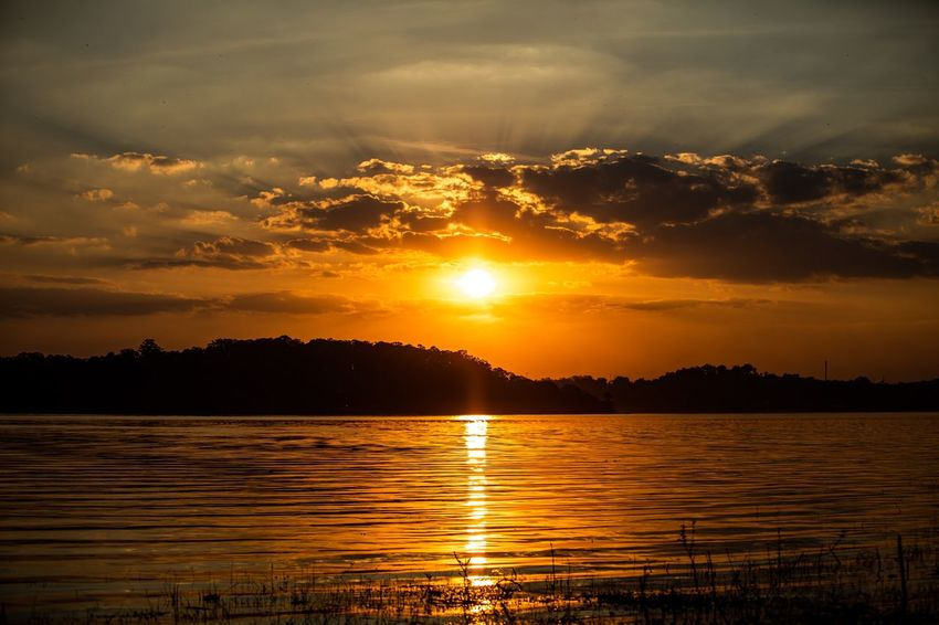 Sun Lights Golden Hour Sunset Water Sky Beauty In Nature Reflection Scenics - Nature Cloud - Sky Tranquility Tranquil Scene Lake Nature Sunlight Idyllic Sun Orange Color No People Tree Silhouette Outdoors Summer In The City