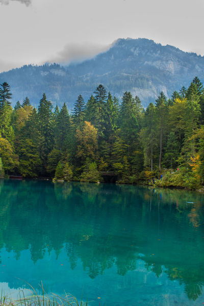Beauty In Nature Blue Water Clear Water Day Forest Green Blue Water Green Water Lake Lake View Mountain Nature Outdoors Scenics Sunyday Tree Water