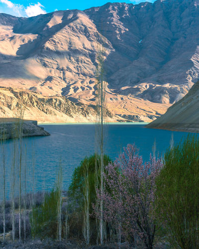 Himalayas Indus Valley Beauty In Nature Dam Day Environment Growth Idyllic Indus River Lake Landscape Mountain Mountain Peak Mountain Range Nature No People Non-urban Scene Outdoors Plant Scenics - Nature Sky Tranquil Scene Tranquility Tree Water