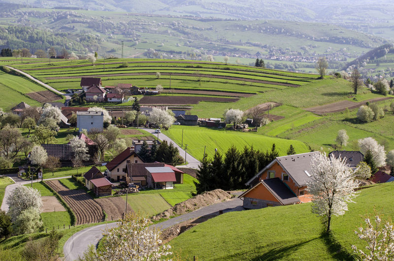 High Angle View Of Agricultural Field And Houses