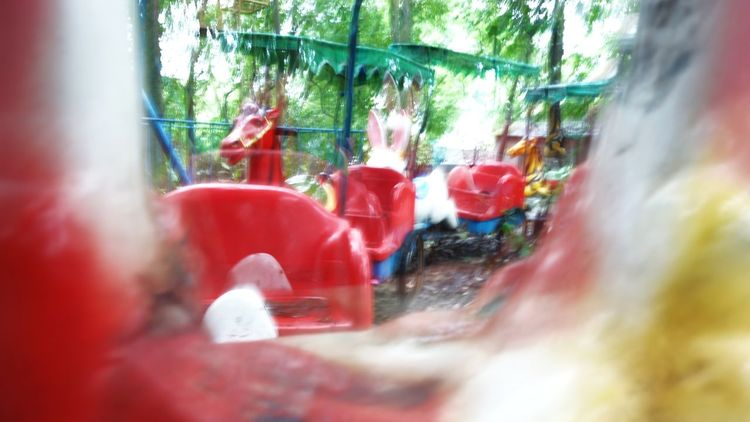 Red Outdoors No People Day Light Unreal Dream Fairground Past Abandoned Tree Wet Dizziness Childhood Child Grow