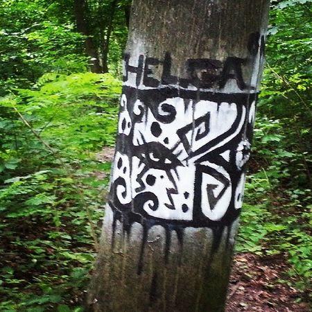 Grafitti Zhytomyr Ukraine Art forest