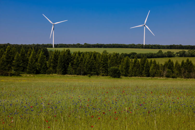 Agriculture Alternative Energy Beauty In Nature Day Environmental Conservation Field Fuel And Power Generation Grass Green Color Industrial Windmill Landscape Meadow Nature No People Outdoors Renewable Energy Rural Scene Sky Technology Traditional Windmill Wind Power Wind Turbine Windmill