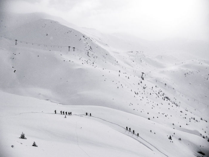 Flock of people on snow covered land