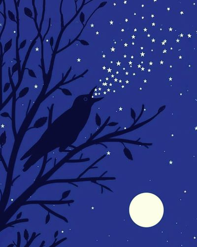 gecenin şarkısı Branch Moon Bird Blue