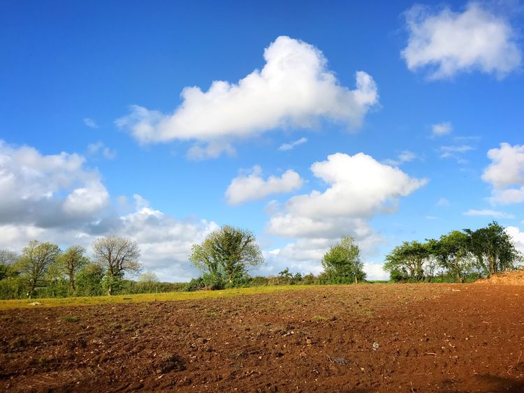 Cloud - Sky Field Agriculture Landscape Sky Plough Nature Tranquility Beauty In Nature Day Tree Growth Tranquil Scene No People Rural Scene Scenics Outdoors Plowed Field Ireland County Cork Agriculture Farming Farm Nature Investing In Quality Of Life