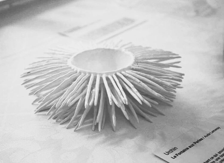 Shades Of Grey Food Design Lisaa Rennes Urchin