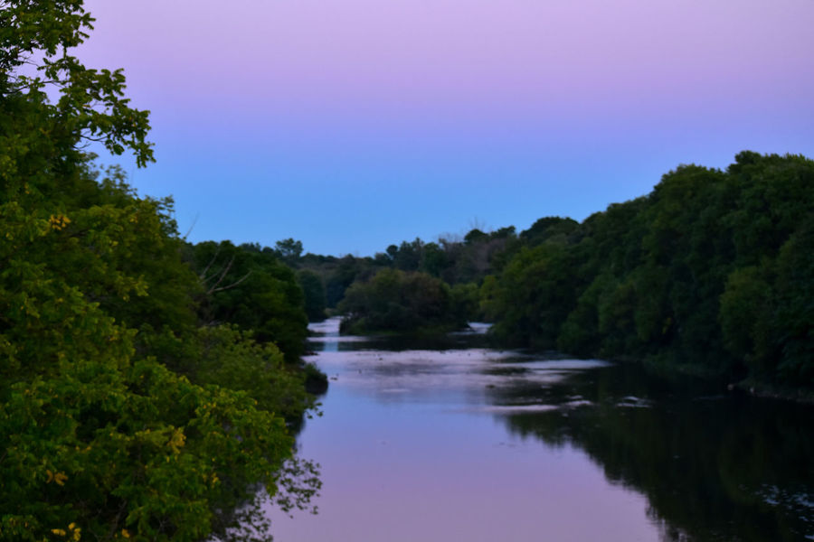 purple sky at twilight reflected in river lined with trees Landscape Nature No People Outdoors Purple Sky Reflection Reflection River Scenics Sky Thames River Side Tree Twilight Skyline Twilight View Water The Great Outdoors - 2017 EyeEm Awards