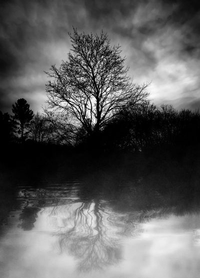 Fine Art Photography Fine Art Foggy Night Reflection Lake View Monochrome Photography Cloud - Sky Darkness And Light From My Point Of View Black And White Night Night Photography Foggy Weather Black And White Sunset Tree Reflection  Water Reflections Cloud Reflections Black And White Hdr  Lake Reflection Clouds And Trees Foggy Sunset Foggy Evening Fog Tree And Sky Evening Sky Tree Porn