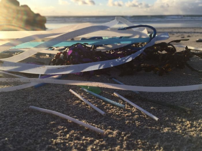 Packaging and straws ~ polluting seas:( Plasticstraws Straws Straps Plastic Pollution Packaging Land Nature Day Beach Water Sunlight End Plastic Pollution No People Sea Outdoors End Plastic Pollution End Plastic Pollution End Plastic Pollution