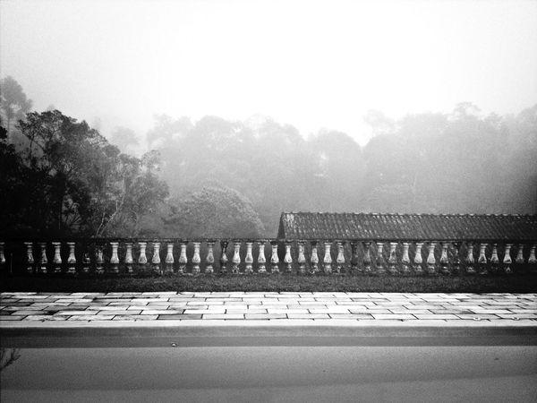 Black & White Don Filter